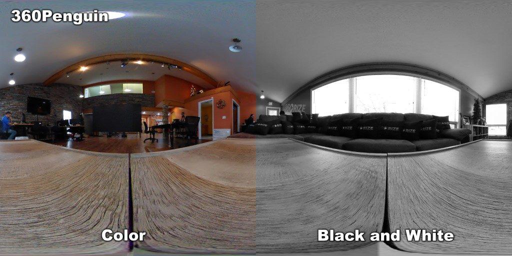 360Rize 360Penguin Color B&W